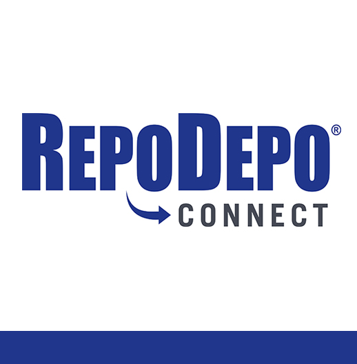 RepoDepoConnect Private Store